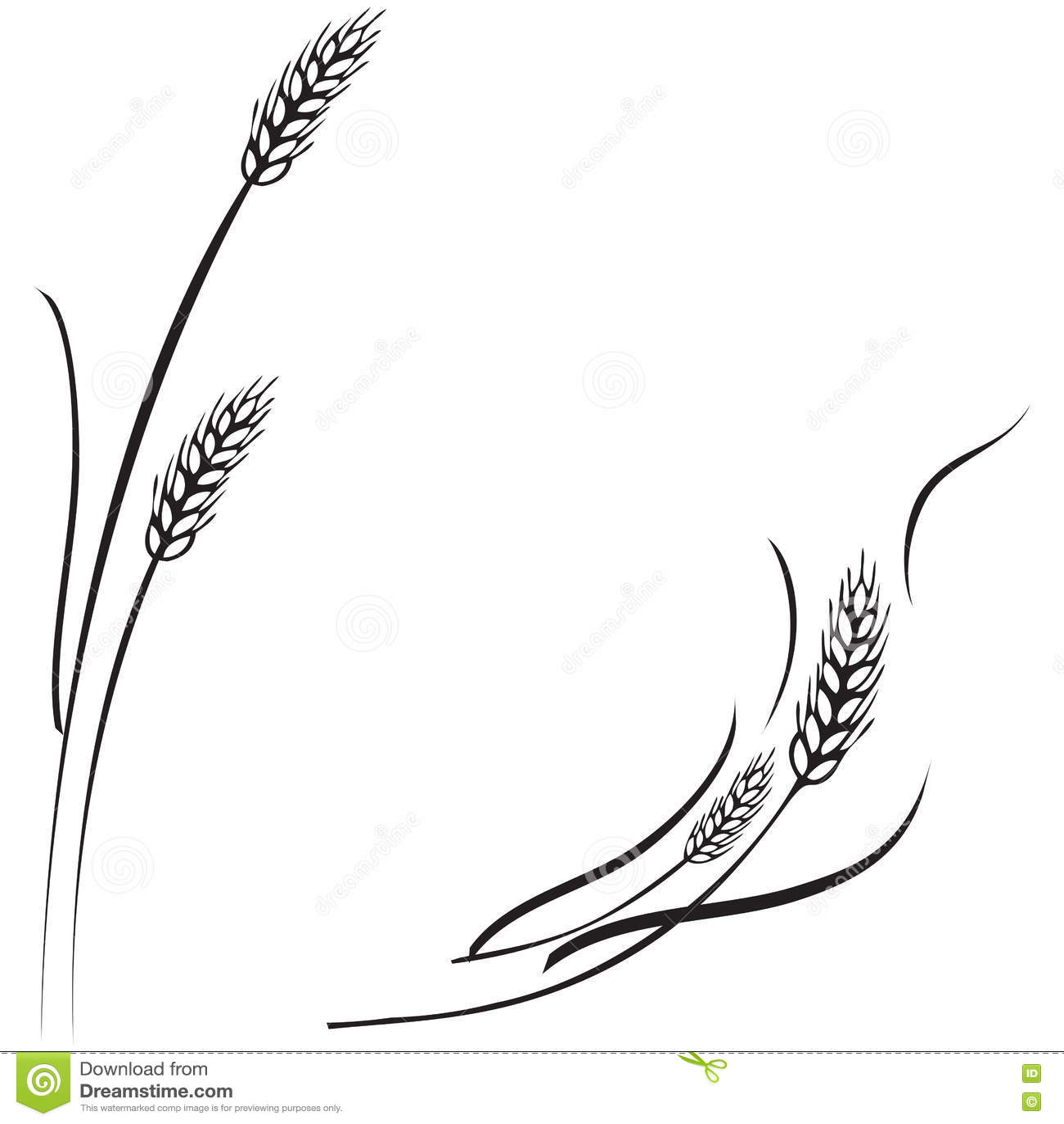 Wheat Ears Frame Border Or Corner Element Royalty Free Stock Photo