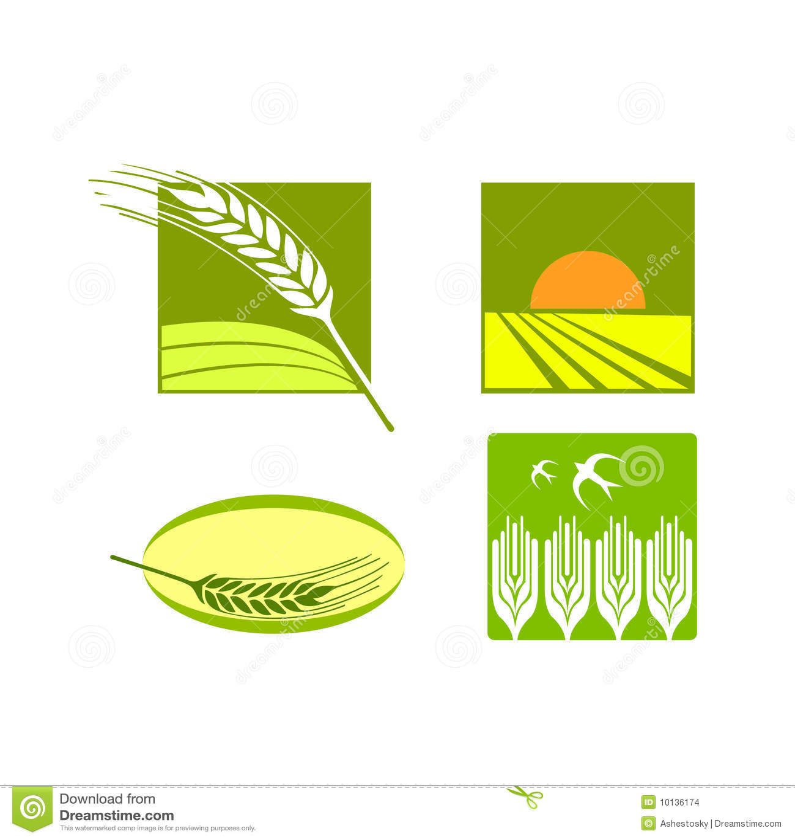 Wheat Food Rice Logo Vector Stock Vector Image 10136174