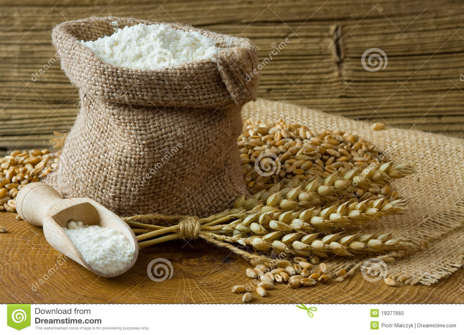 Wheat grain and flour