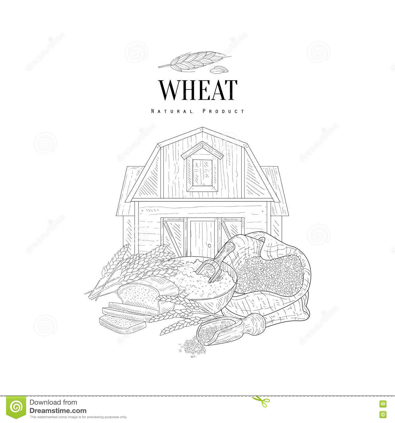 Wheat Grain Flour Stock Illustrations – 6,449 Wheat Grain Flour ...