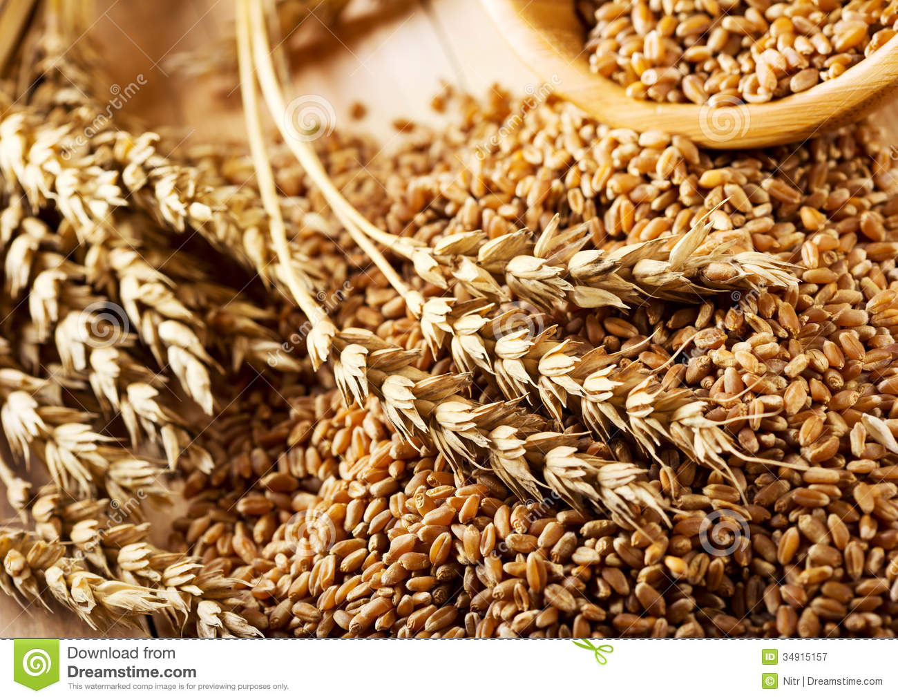 Wheat Grains Royalty Free Stock Photography - Image: 34915157