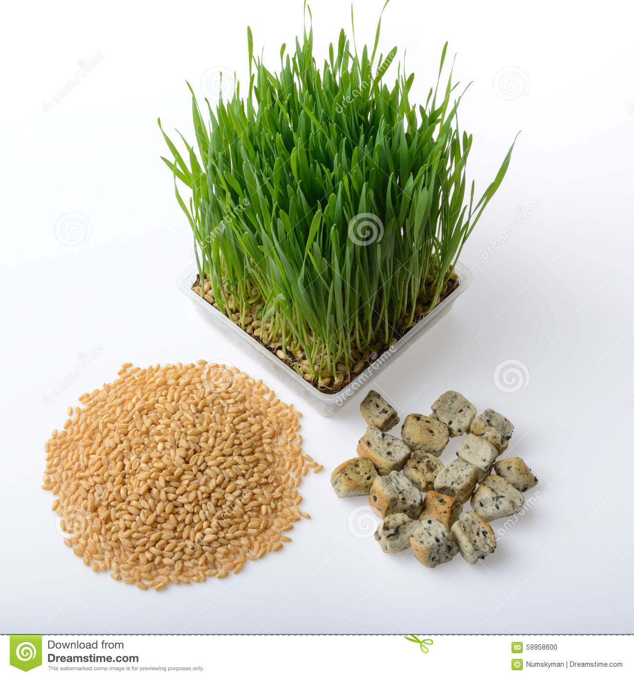 Wheat Grass,whole Wheat Bread And Wheat Grains Stock Photo ...