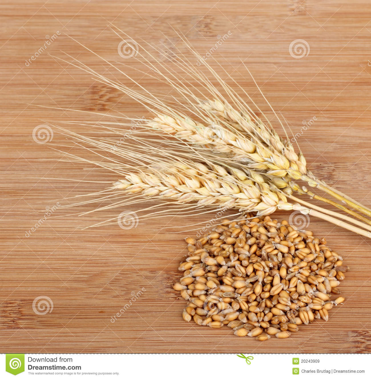 Wheat Heads And Wheat Grain Stock Image - Image of kernel