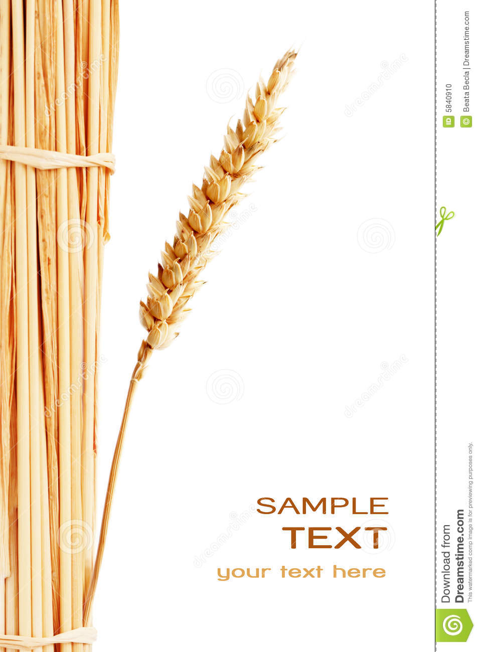wheat stack stock photo
