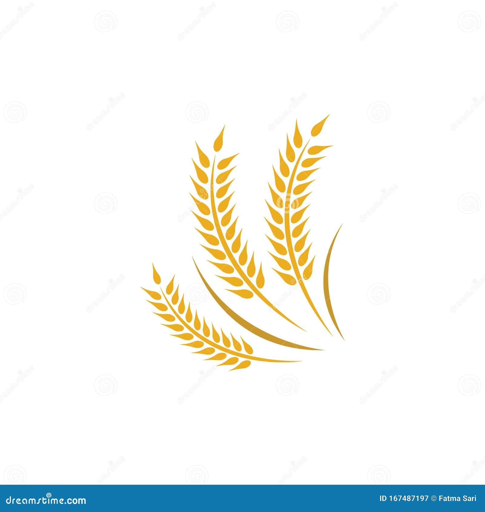Wheat vector icon stock vector. Illustration of wheat ...