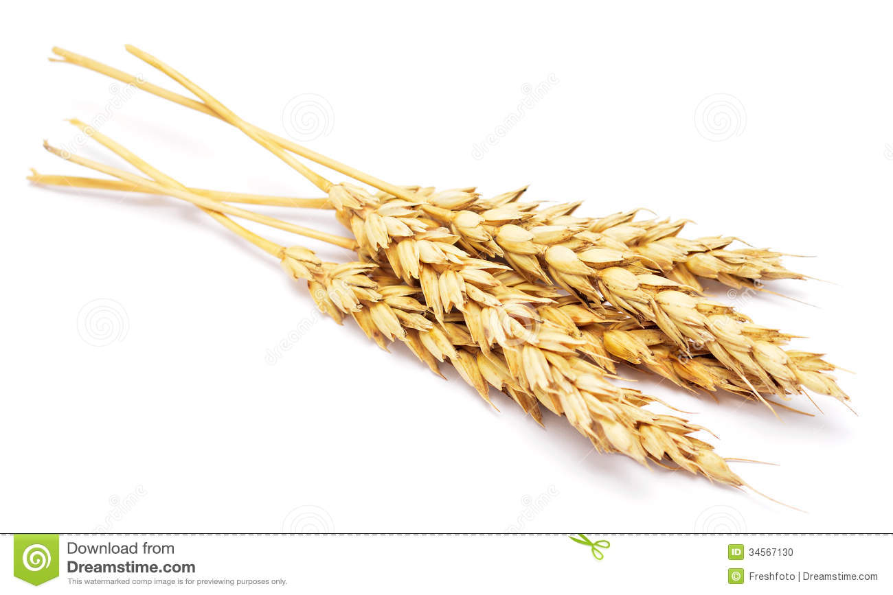 How to Invest in Wheat