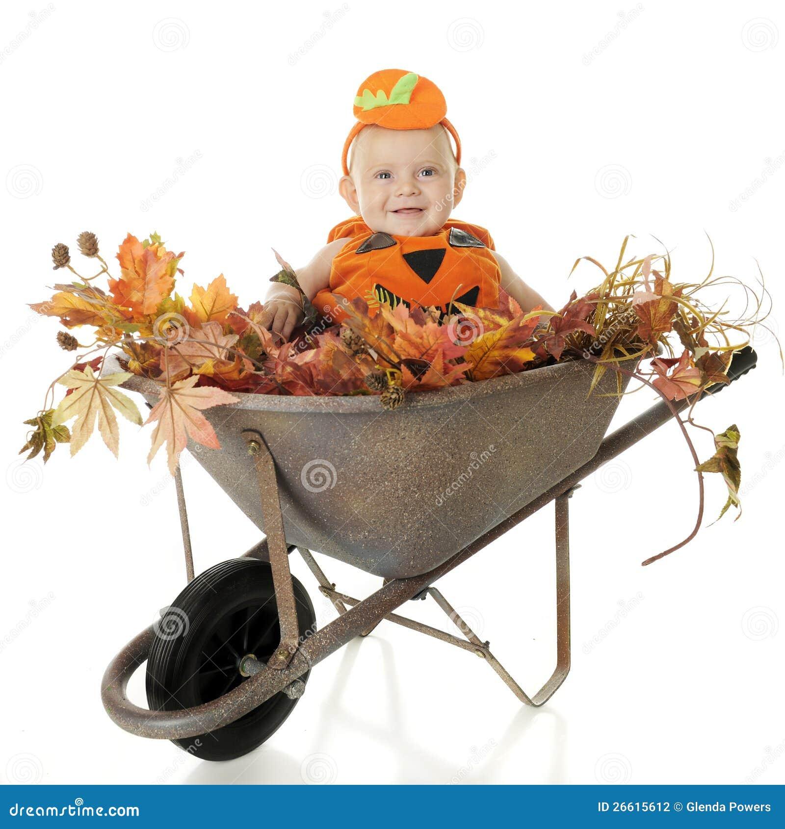 Wheelbarrow Full of Baby