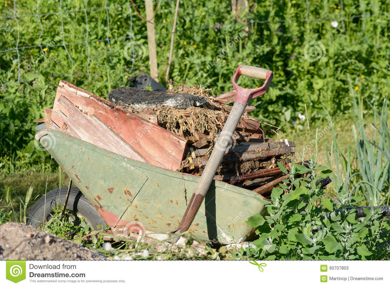 Wheelbarrow Full Of Garden Debris Stock Photo Image