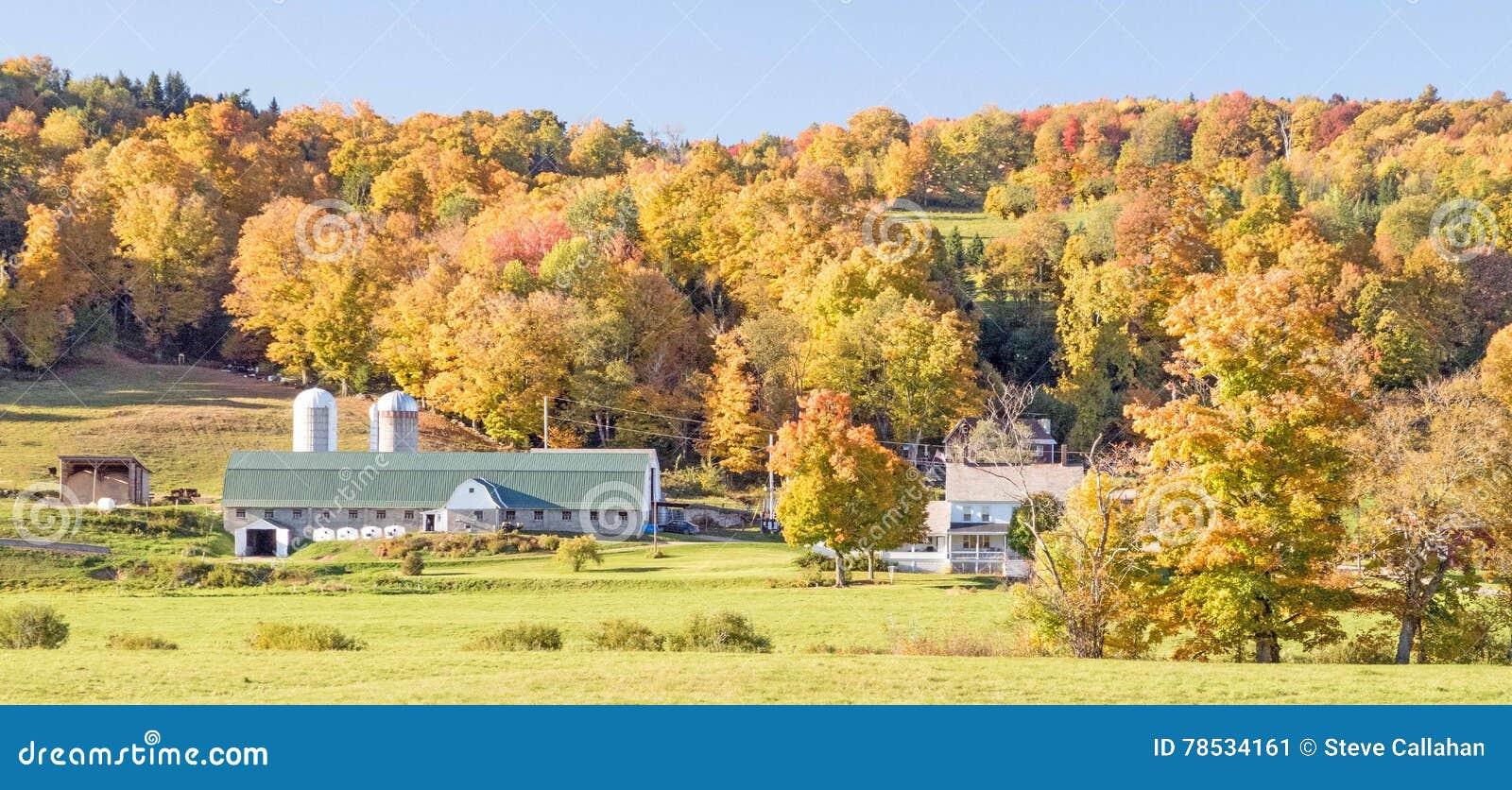 Wheeler farm