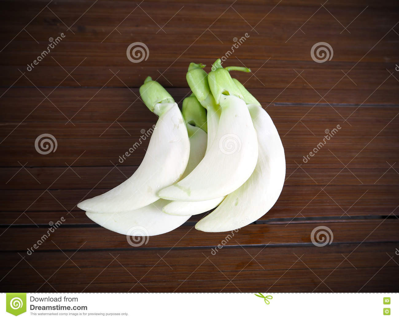 White Agasta Flower From Agasta Plant Thai Vegetable Stock Photo