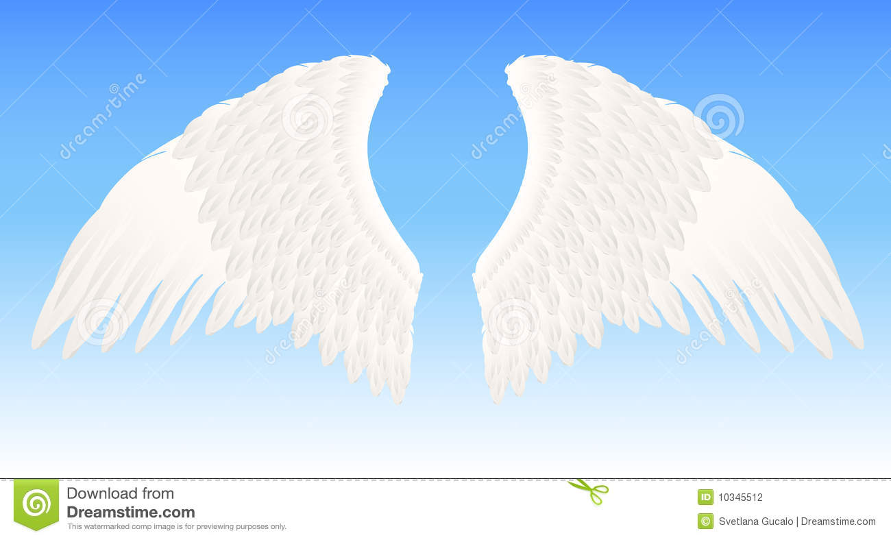 White Angel Wings Stock Photography Image 10345512