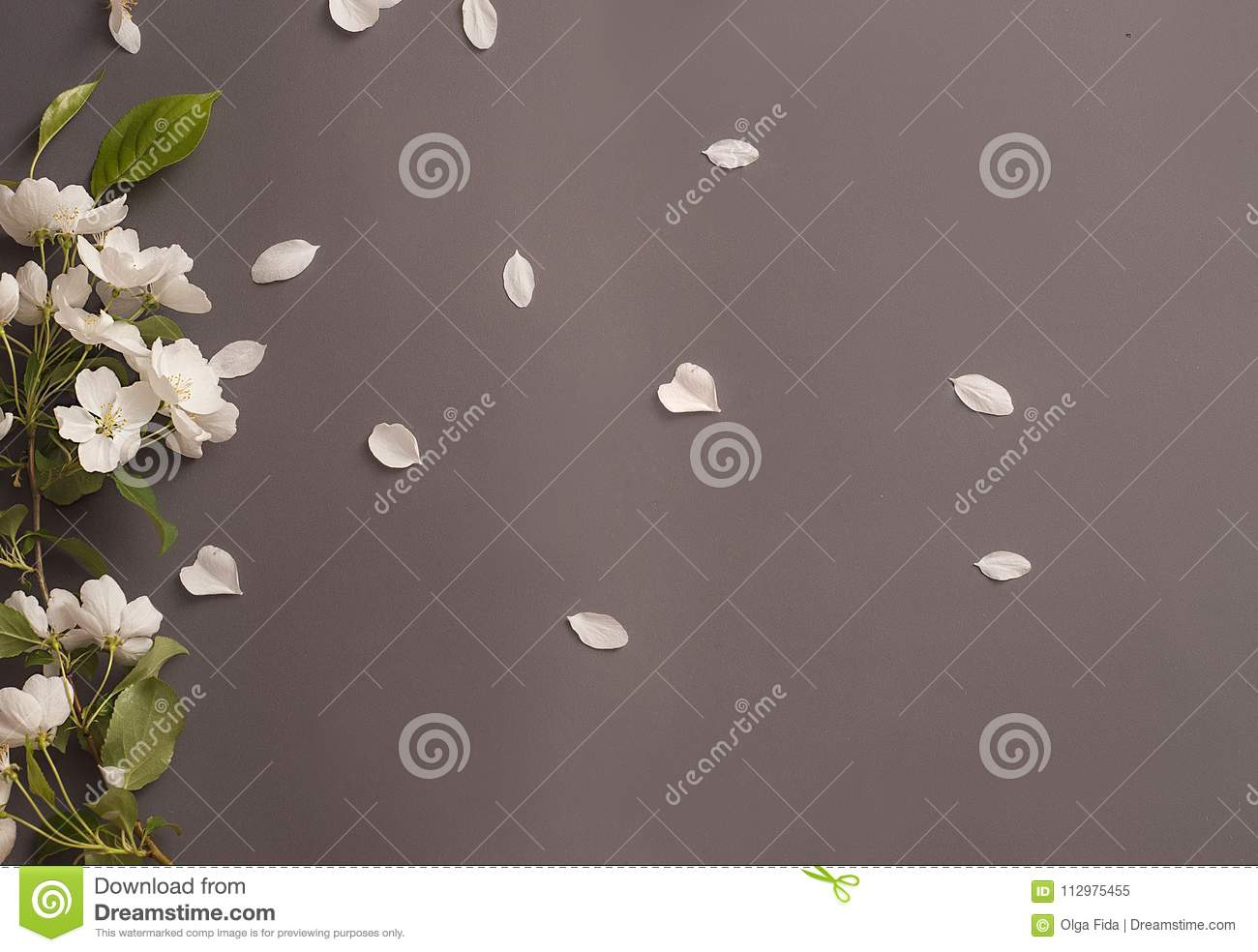 White Apple blossoms with green leaves