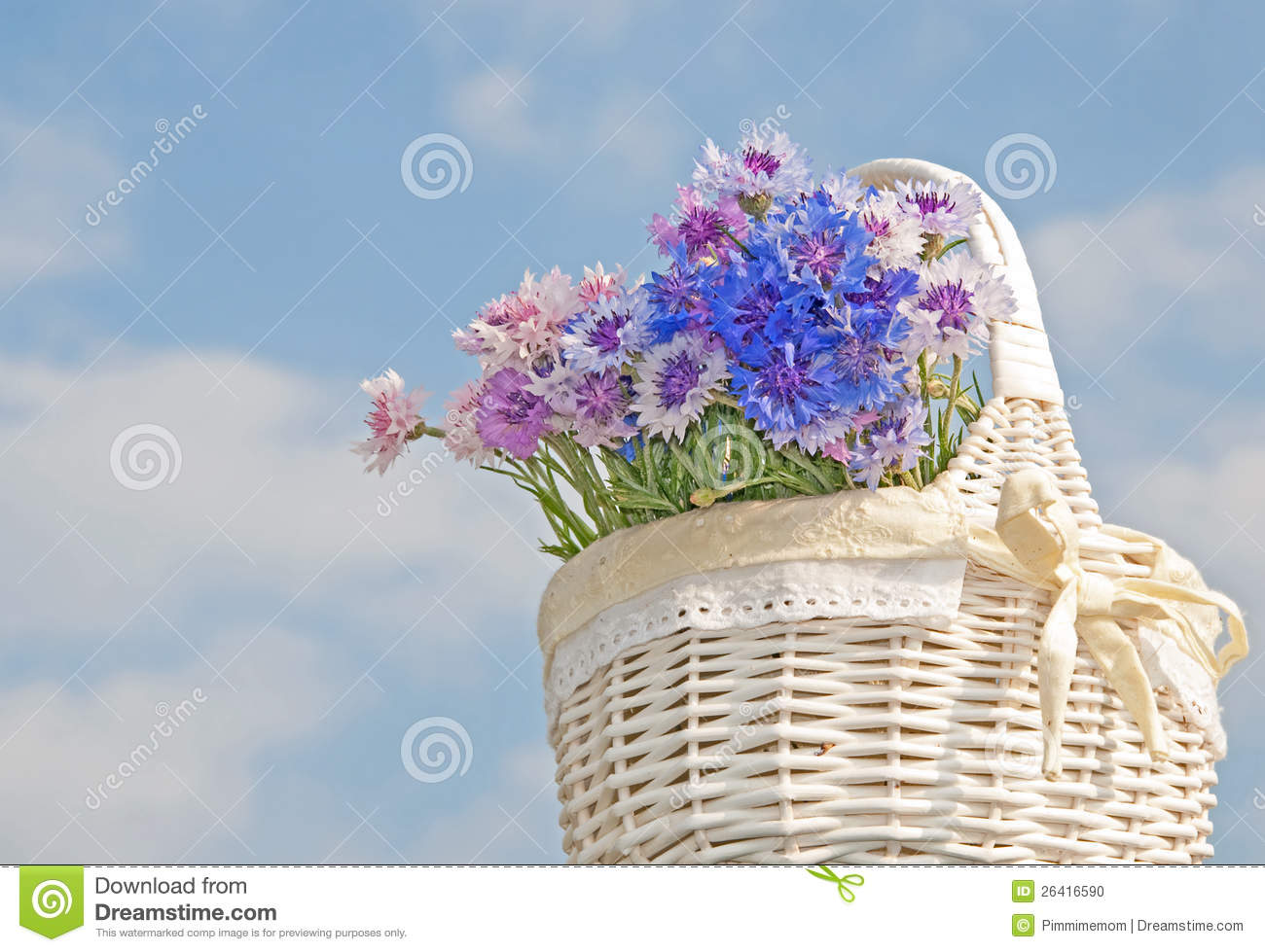 white basket with pastel colored cornflowers stock photo. Black Bedroom Furniture Sets. Home Design Ideas