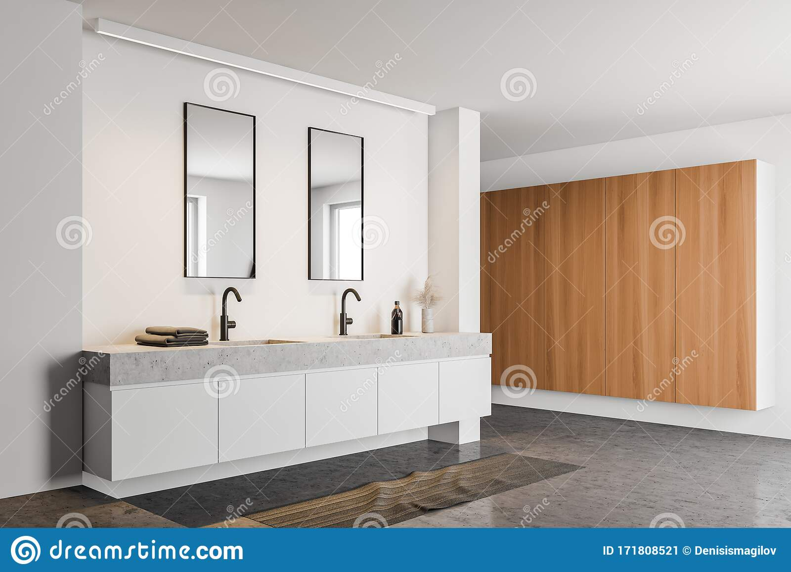White Bathroom Corner With Double Sink Stock Illustration Illustration Of House Contemporary 171808521