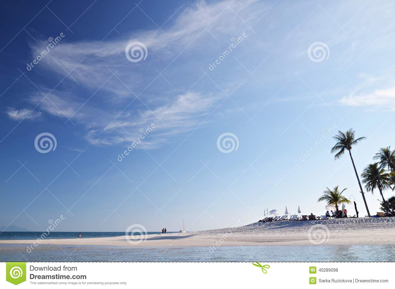 White beach and palm trees