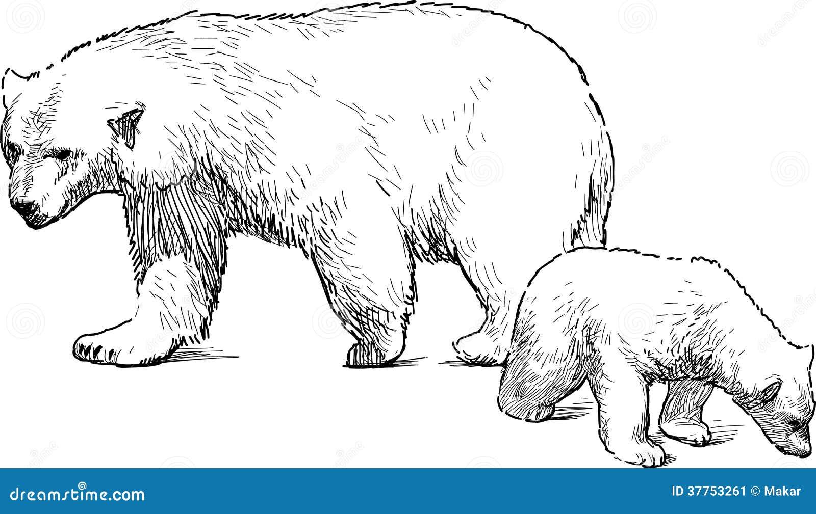 White Bear With Cub Stock Image Image 37753261