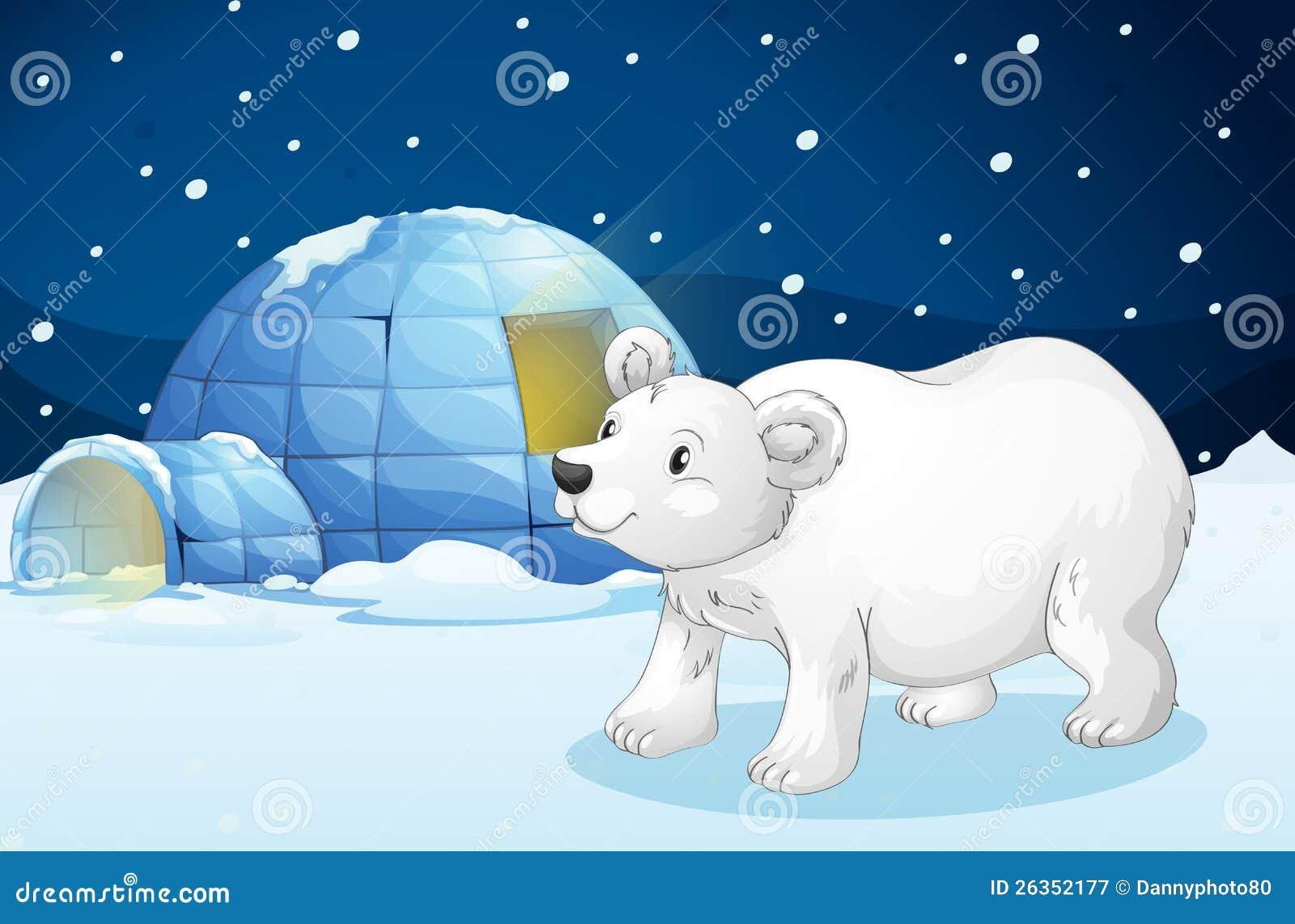 white bear and igloo stock vector  image of animal  protection