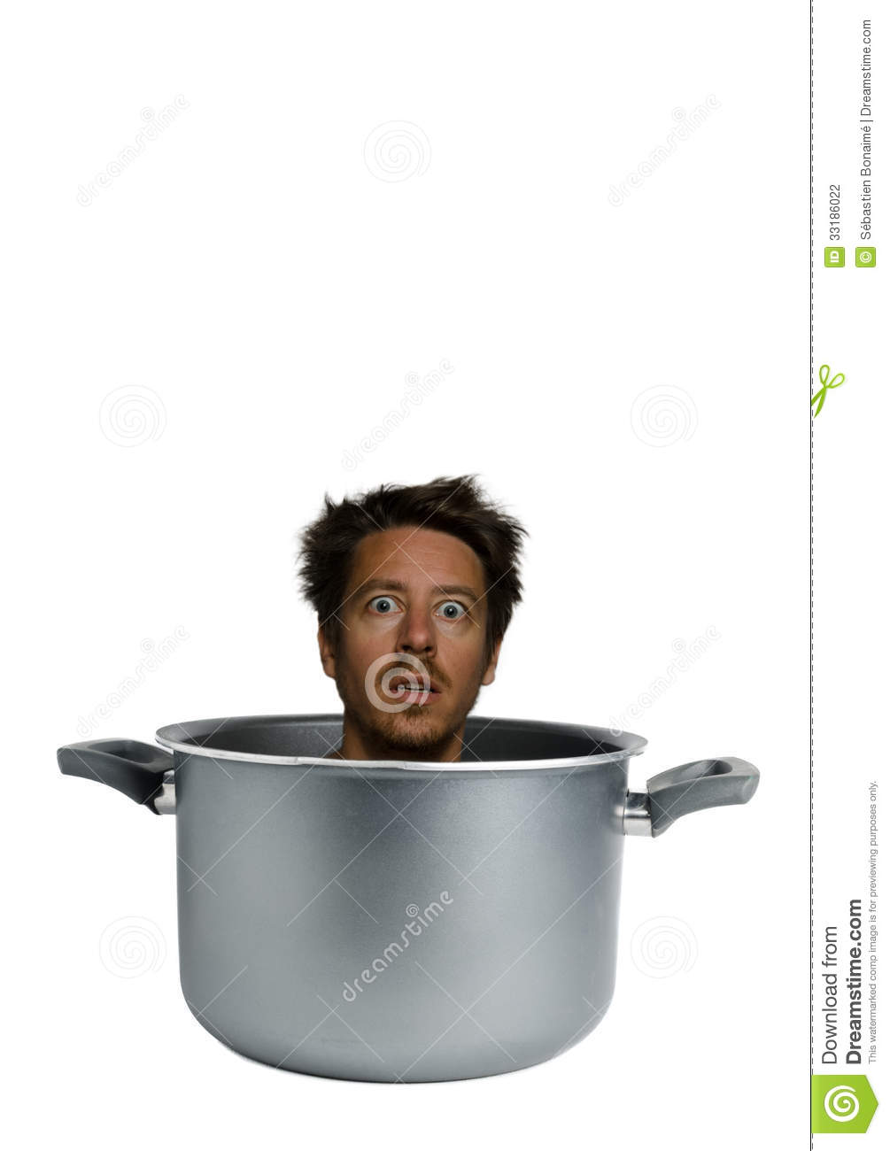 bearded cooked stock photography image 33186022