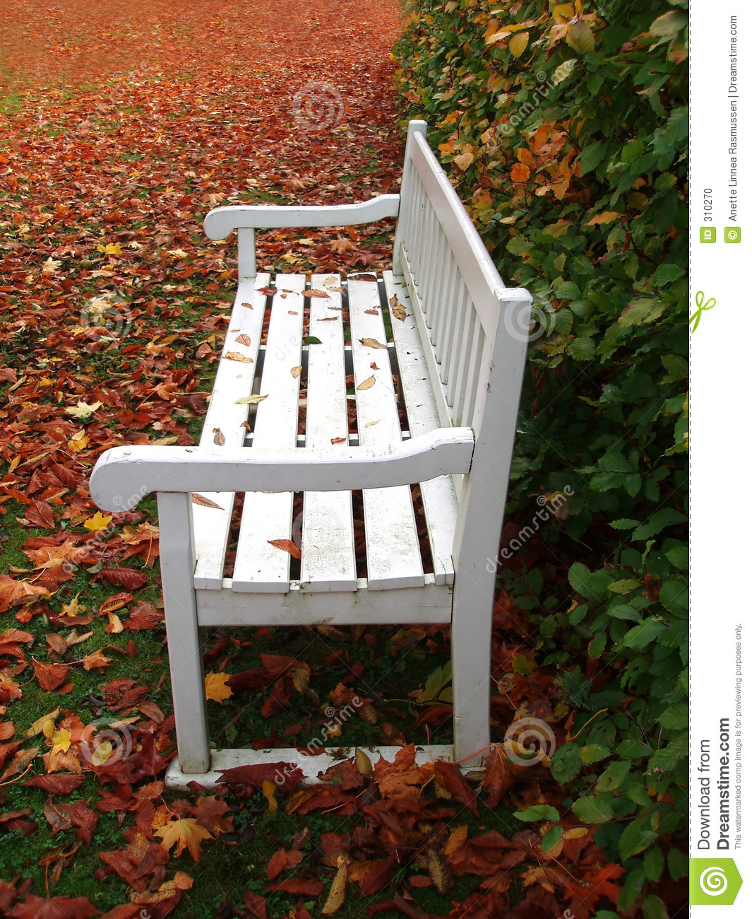 White Bench In Park Stock Photo Image Of Dirty Yellow