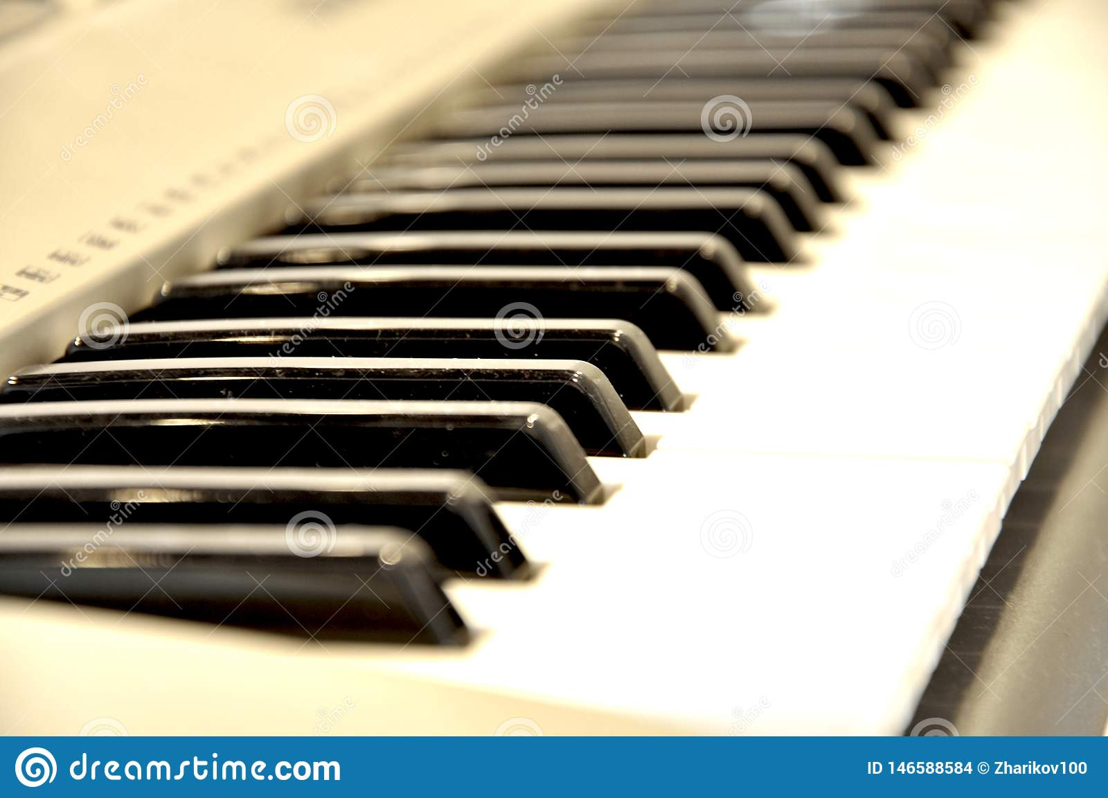 White and black synth keys