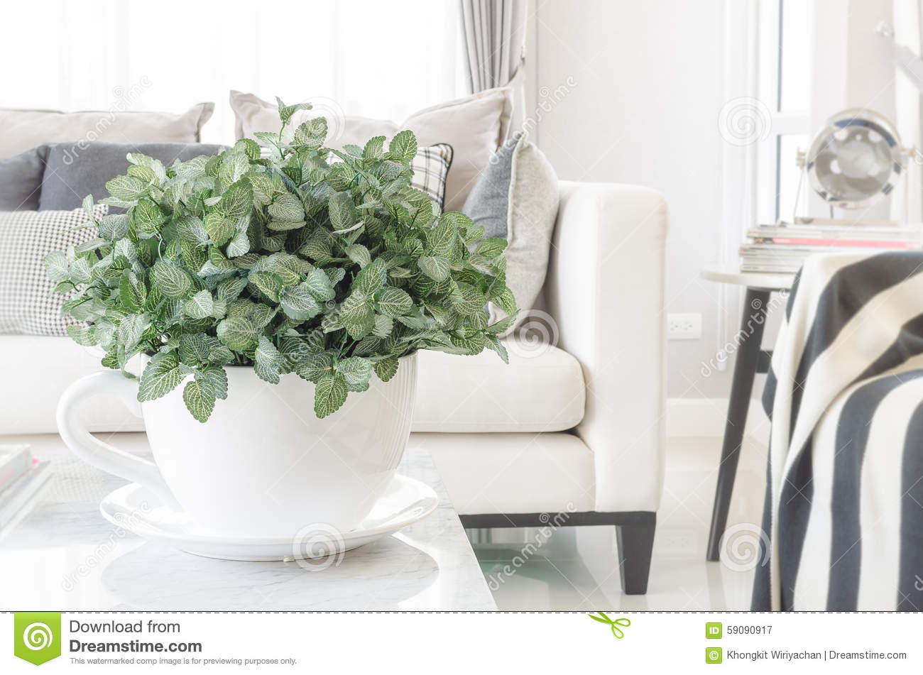 White Bowl Of Plants On Table In Modern Living Room Stock Image ...