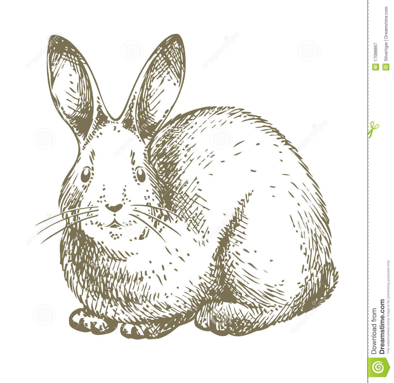 White Bunny Drawing Royalty Free Stock Photography