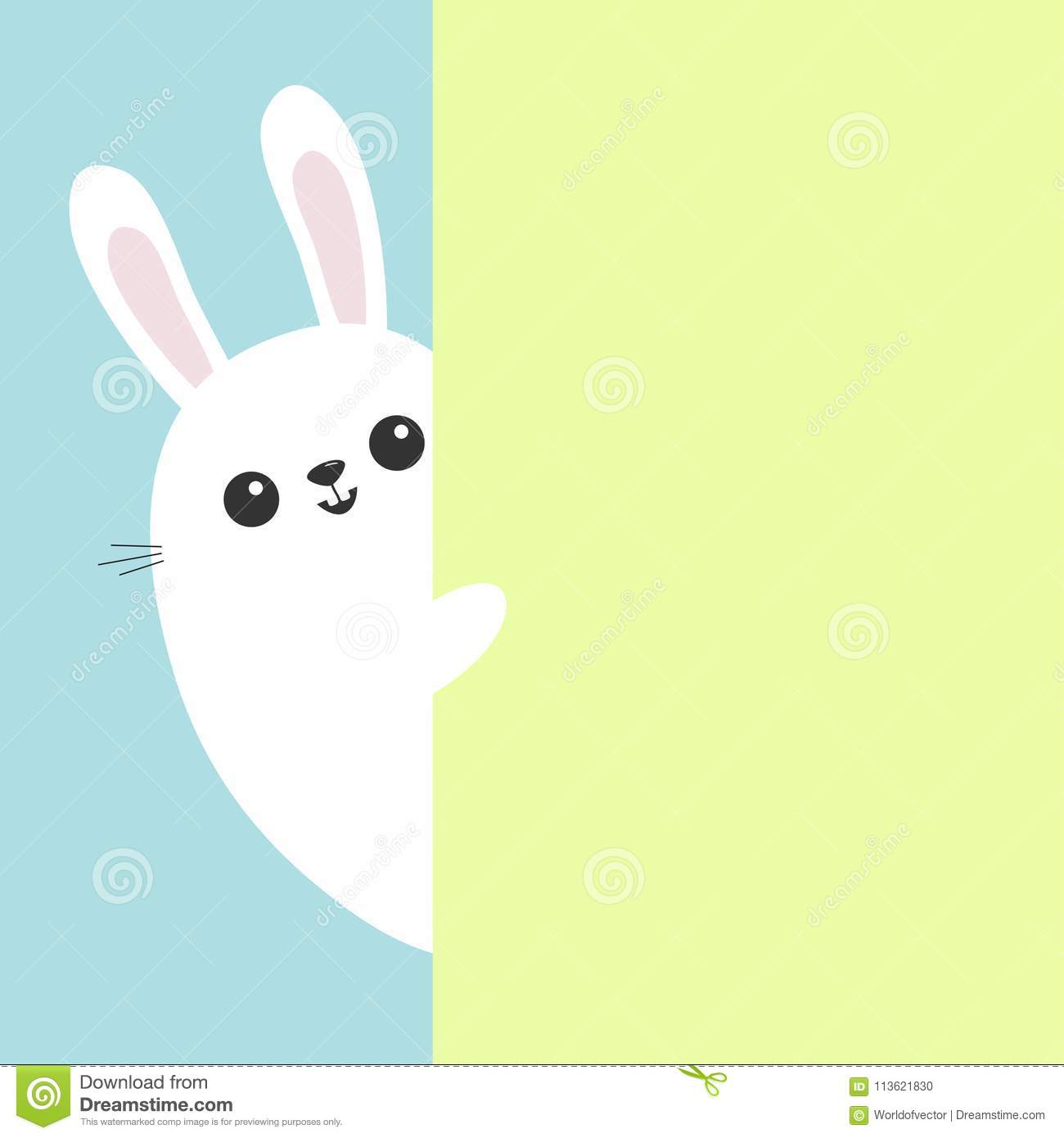 White Bunny Rabbit Holding Green Wall Signboard Cute Cartoon Funny
