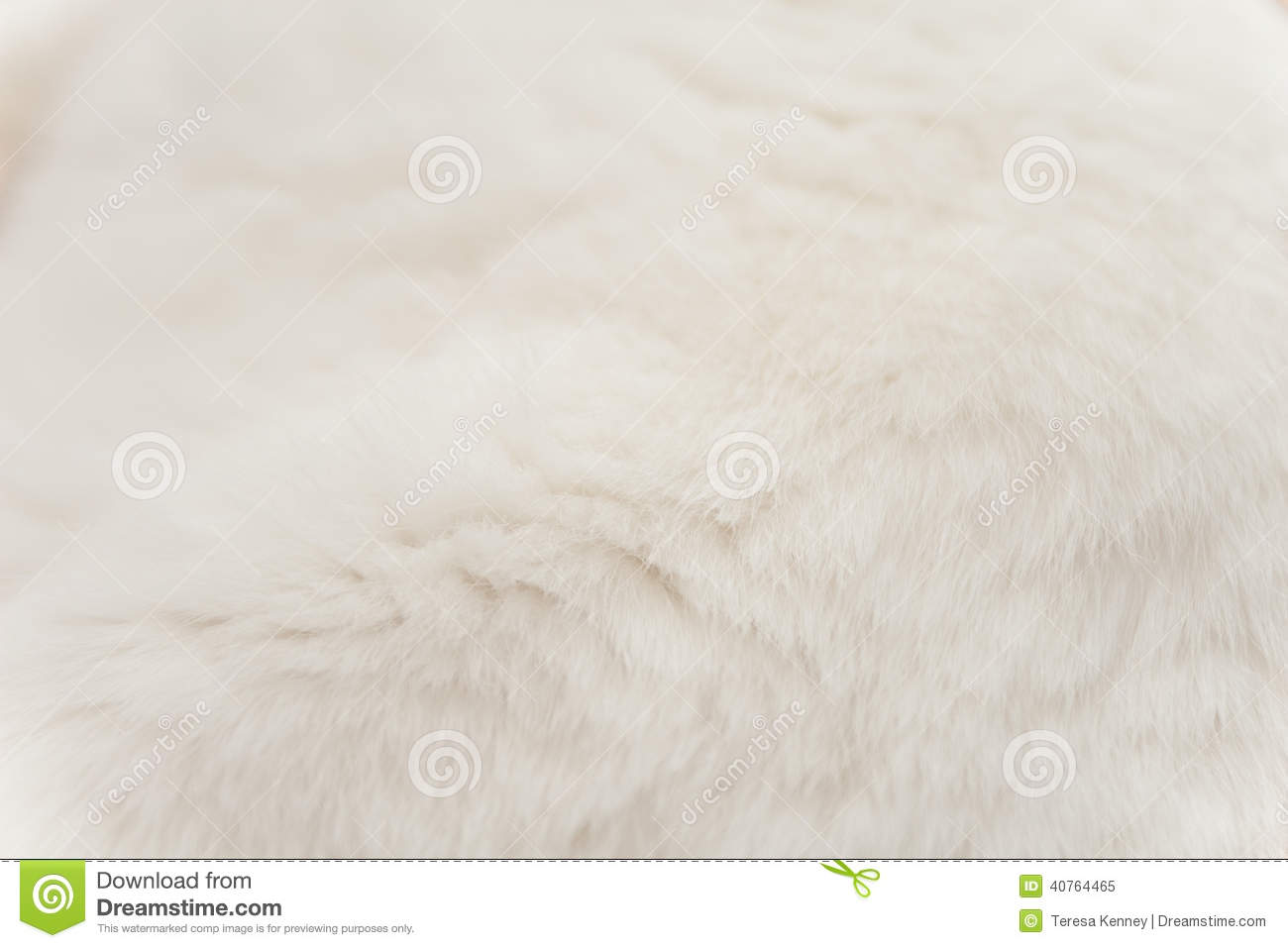 Color of cats fur - White Cat Fur
