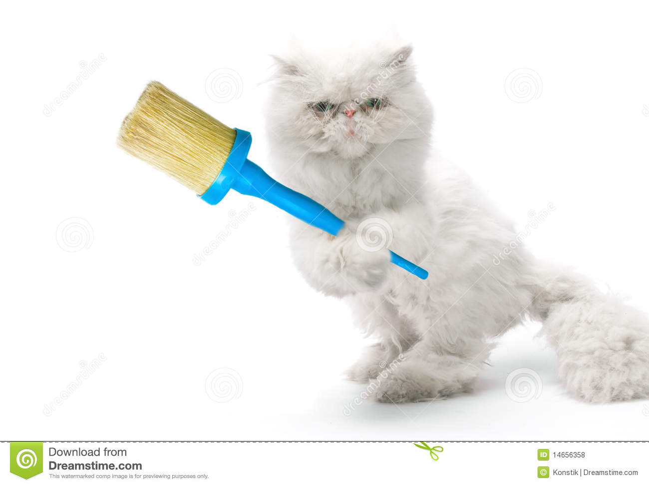 White cat-house painter with brush