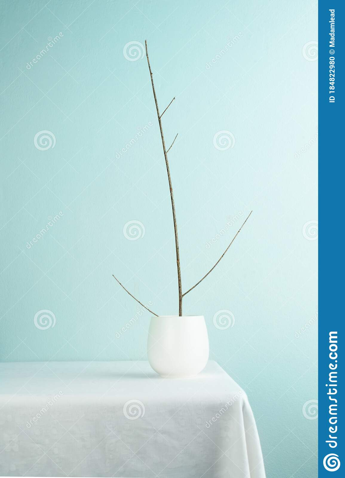 White Ceramic Tea Cup With Wood Branch On Table Interior Decoration With Light Green Blue Wall Background Stock Photo Image Of Oriental Relax 184822980
