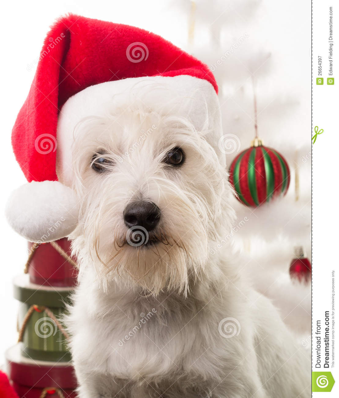 free christmas clip art with dogs - photo #39