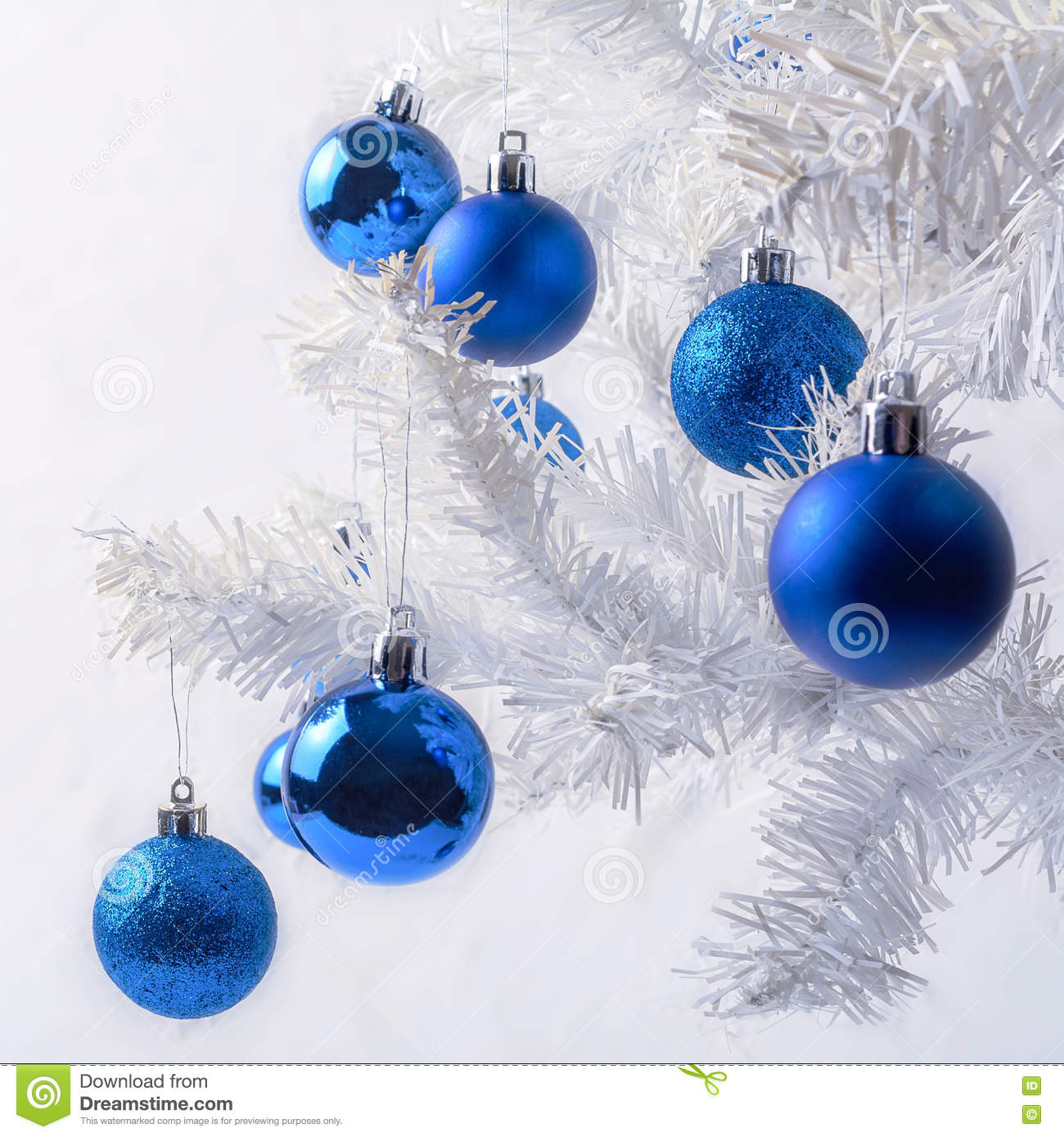 download white christmas tree branch with royal blue ornaments stock photo image of decoration