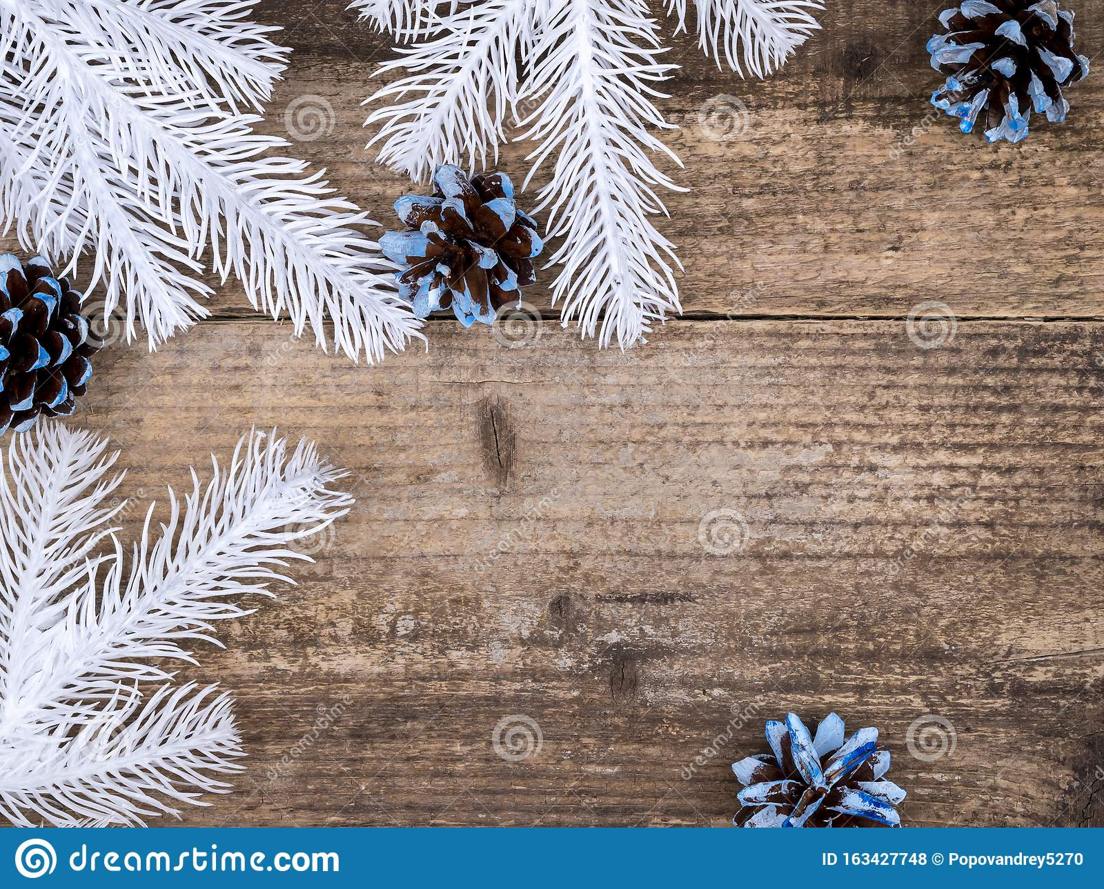 White Christmas Tree Branches And Blue Cones Stock Photo Image Of Prickly Decor 163427748
