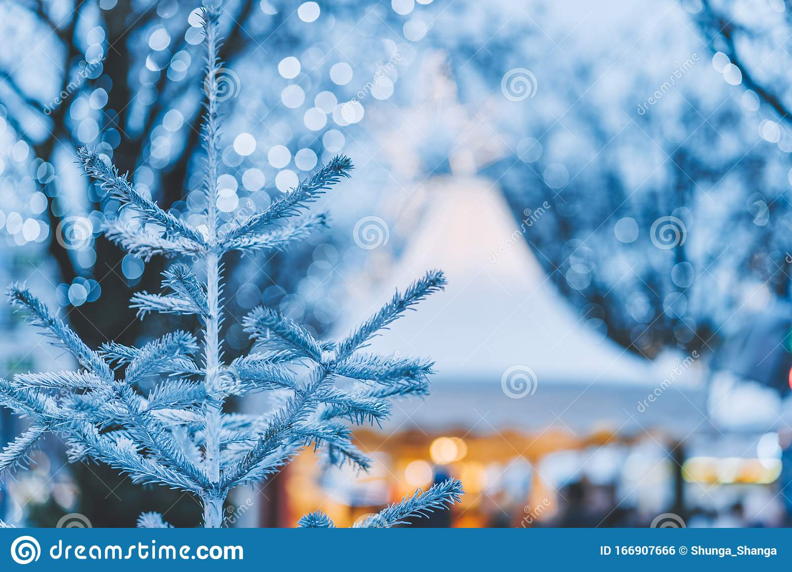 White Christmas Tree Or Fir Branches On Christmas Outdoor ...