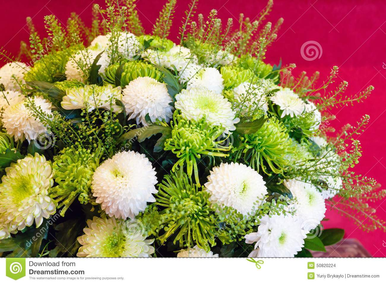 White chrysanthemum flowers bouquet stock photo image