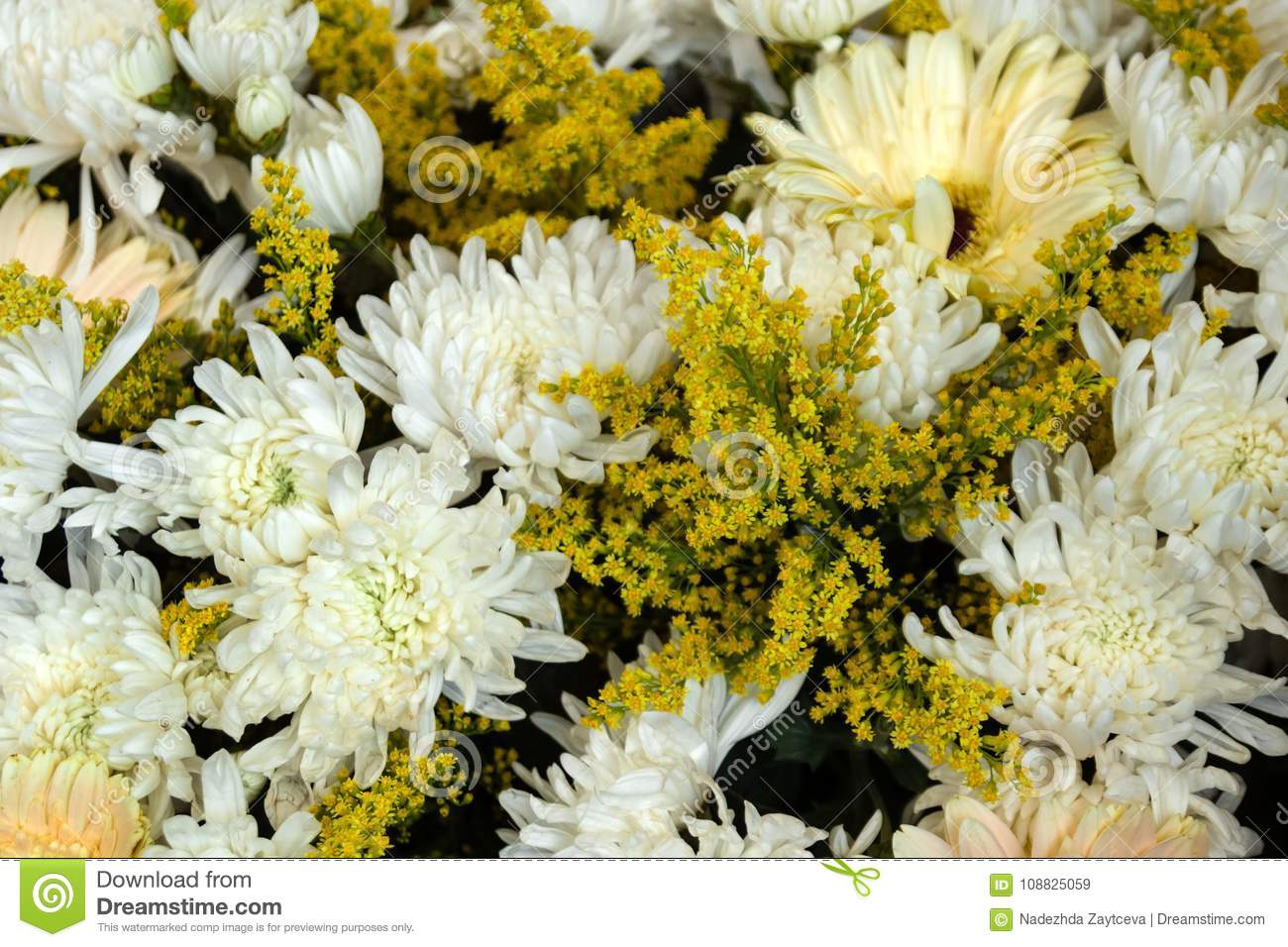 White Chrysanthemums And Yellow Flowers Of Mimosa In The Bouquets At