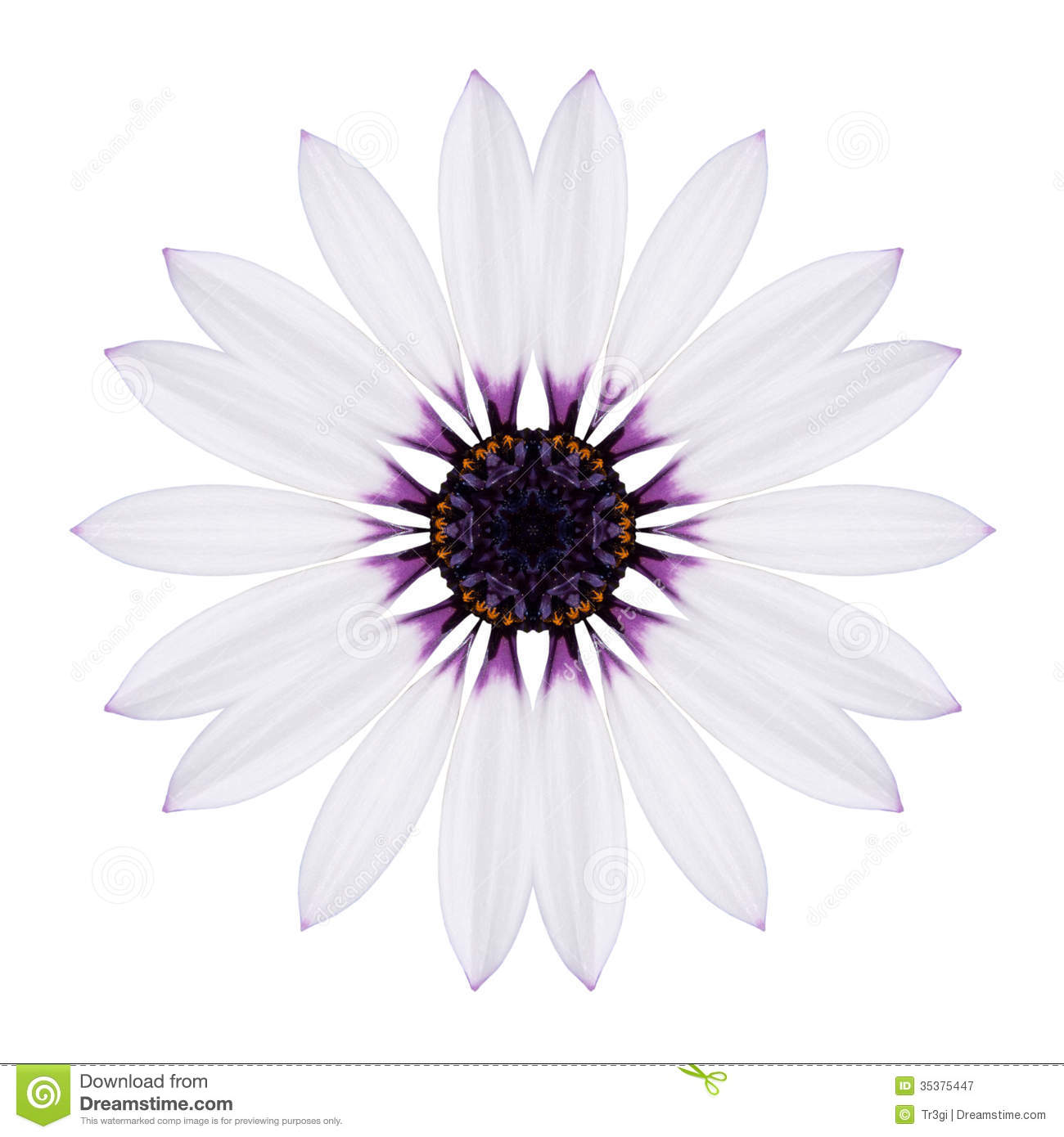 Flower Black and White Vector Images (over 67, )