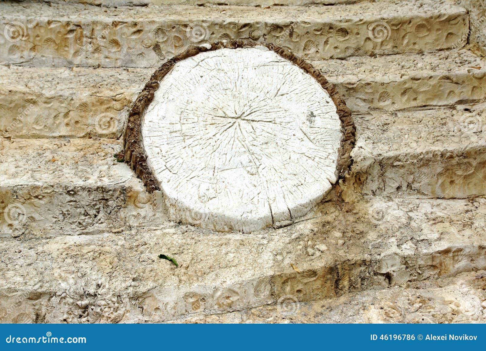 White Decorative Stones : White concrete decorative stone like as tree cross section