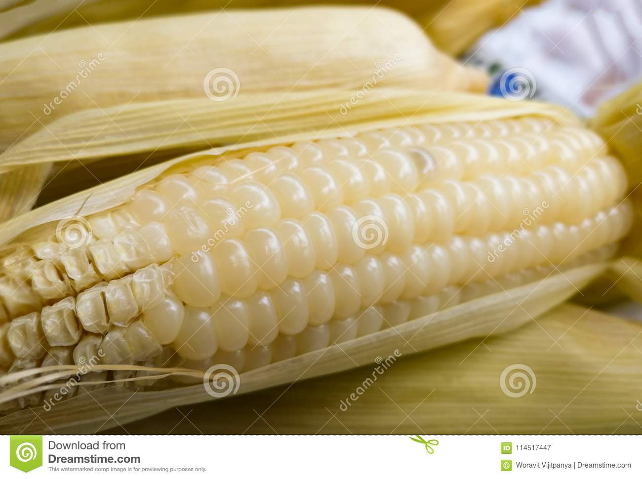 White corn stock image  Image of closeup, diet, corncob
