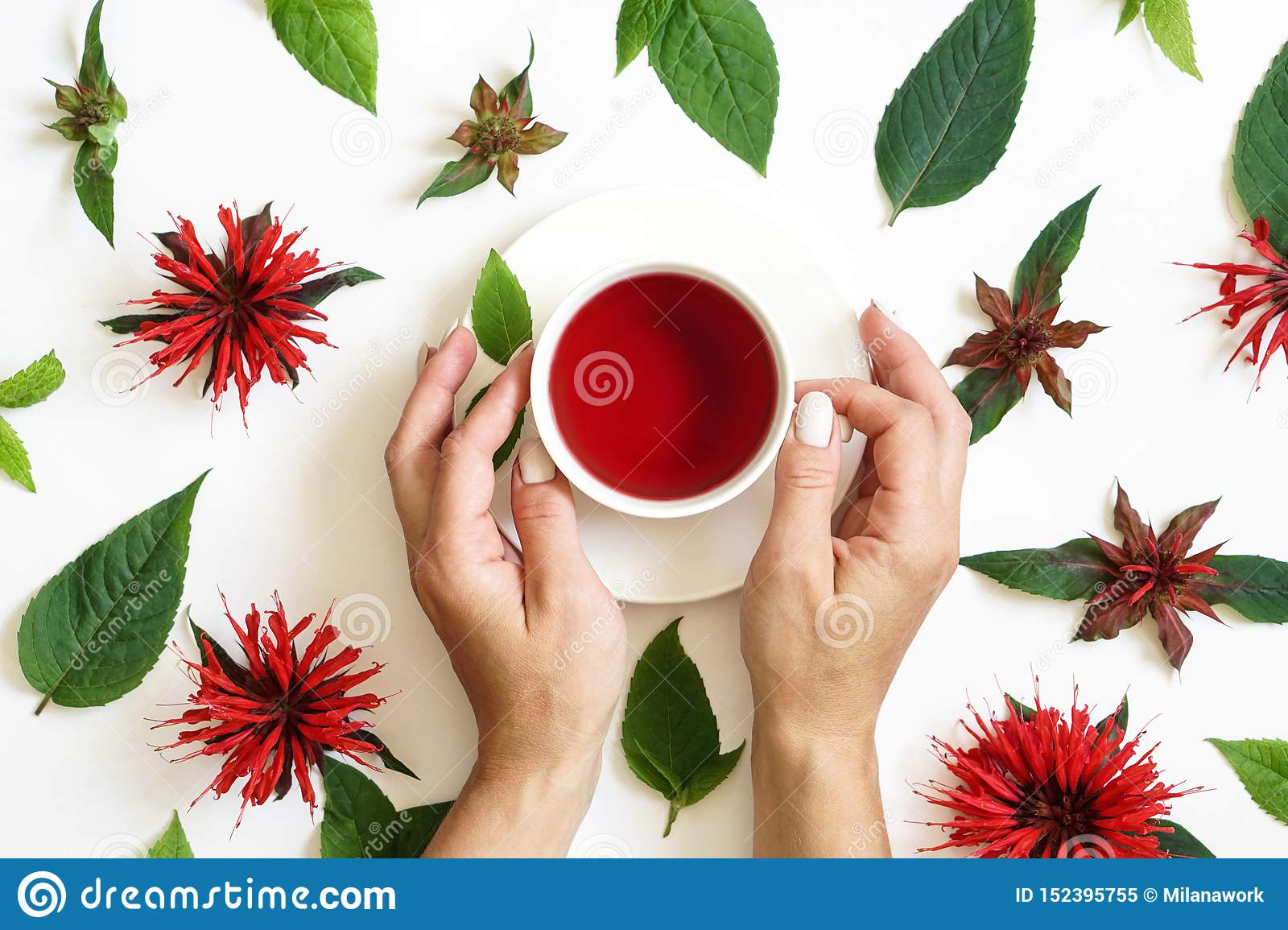 White cup of tea surrounded by the bergamot leaves and flowers