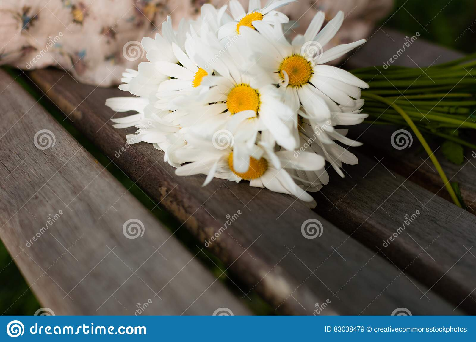 Free Public Domain CC0 Image  White Daisy On Brown Wood Picture ... 1509af9767