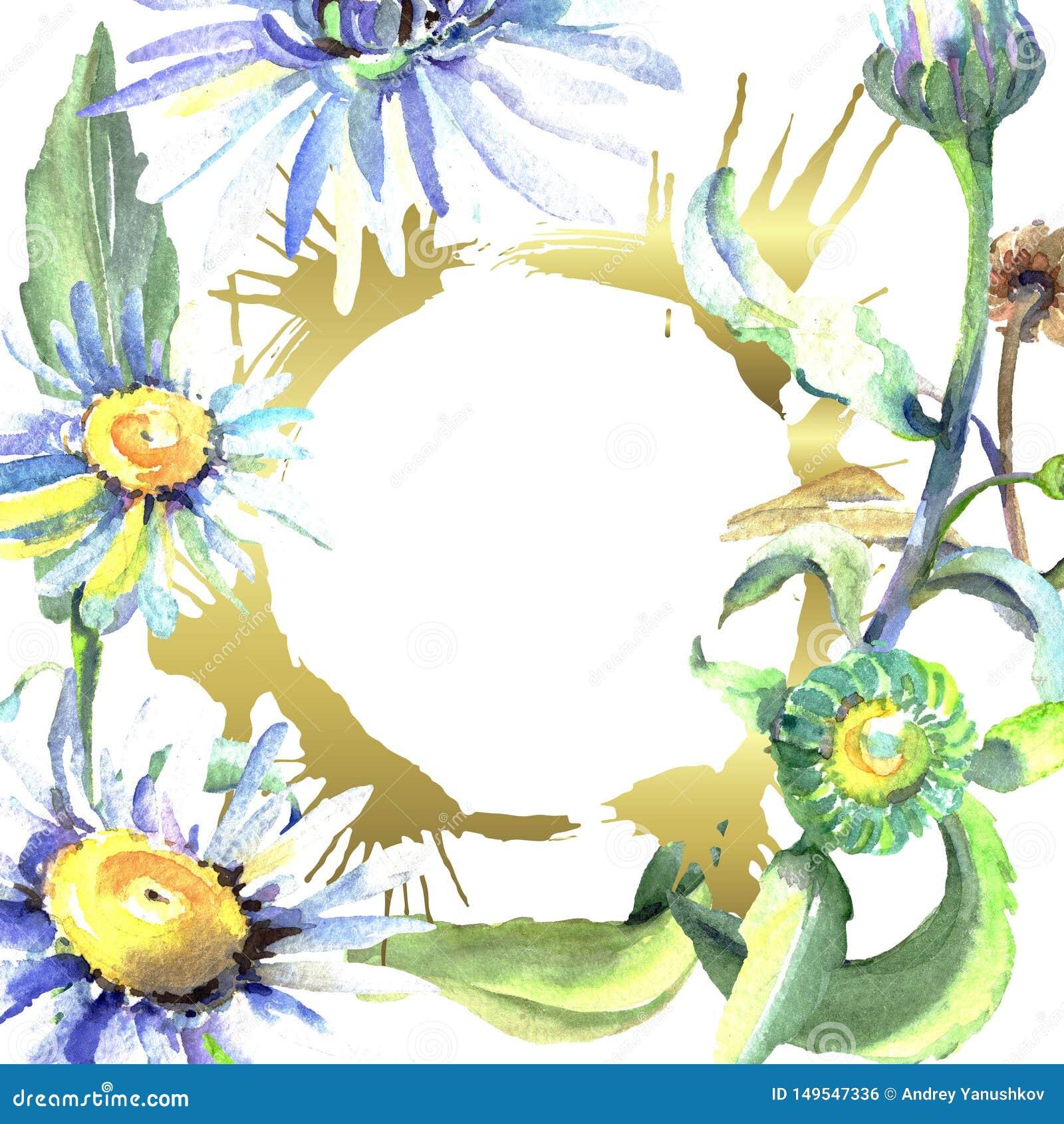 White daisy floral botanical flowers. Watercolor background illustration set. Frame border ornament square.