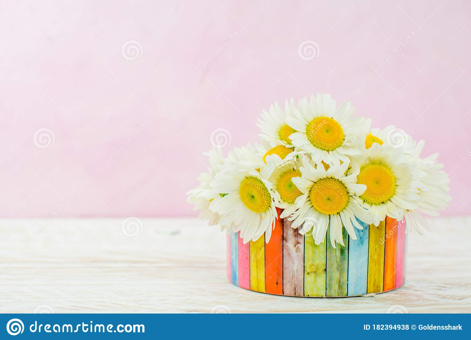 White Daisy Flower In Vase And Grass Stock Photo - Image ...
