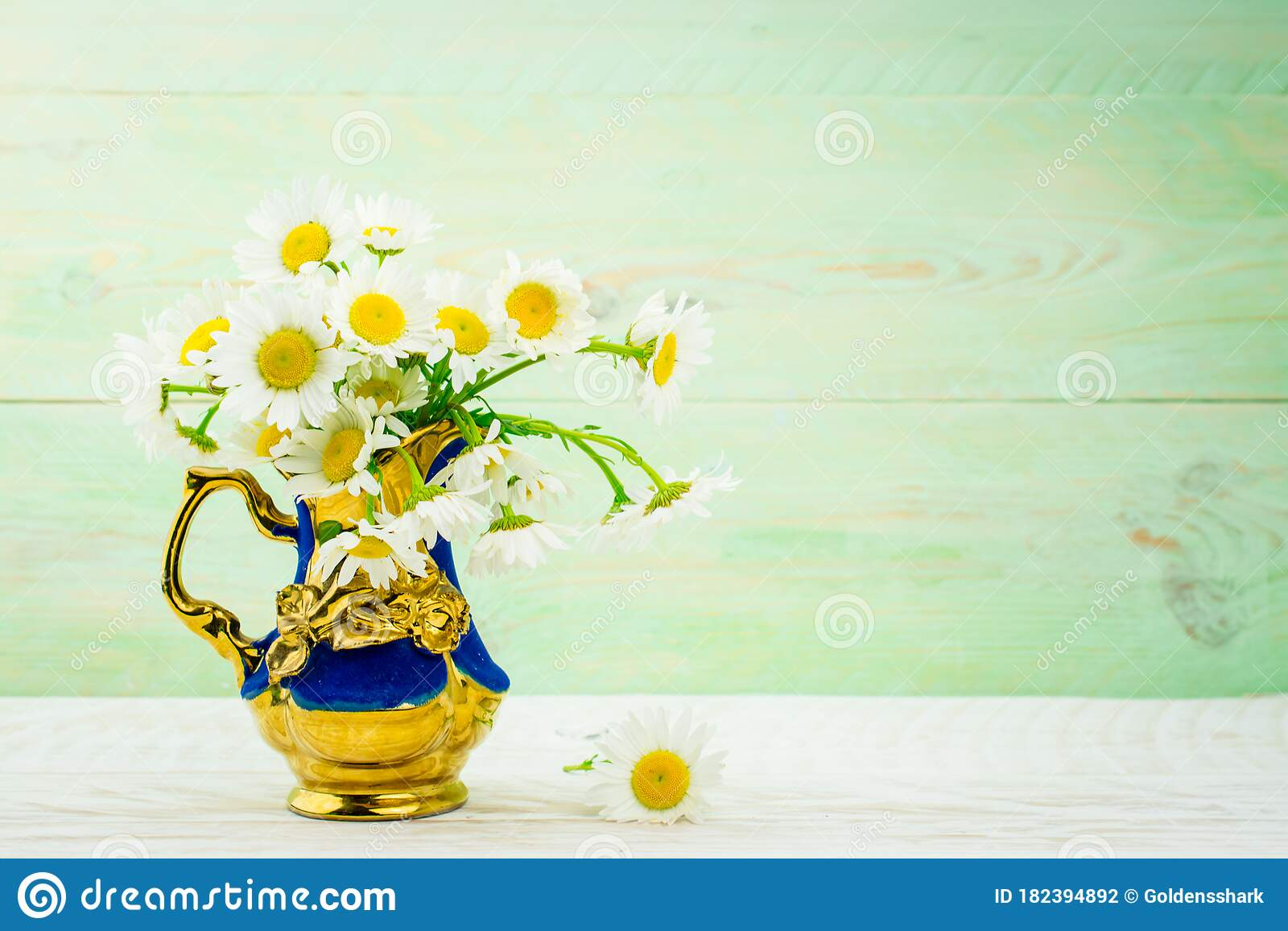 White daisy flower in vase stock photo. Image of ancient ...