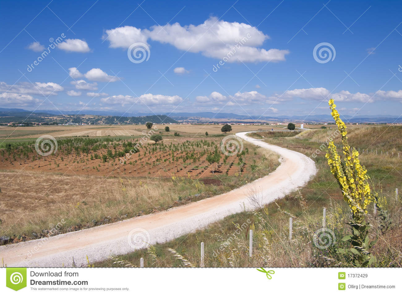 Winding Dirt Road Related Keywords & Suggestions - Winding ...