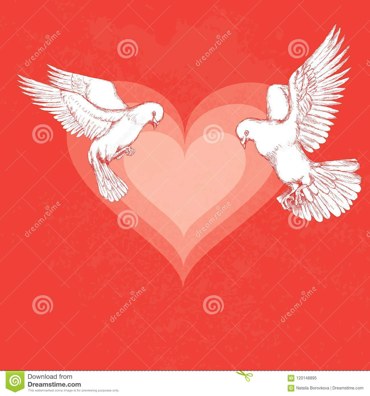 White Dove Flies. Bird On Color Background, Hearts For Romantic ...
