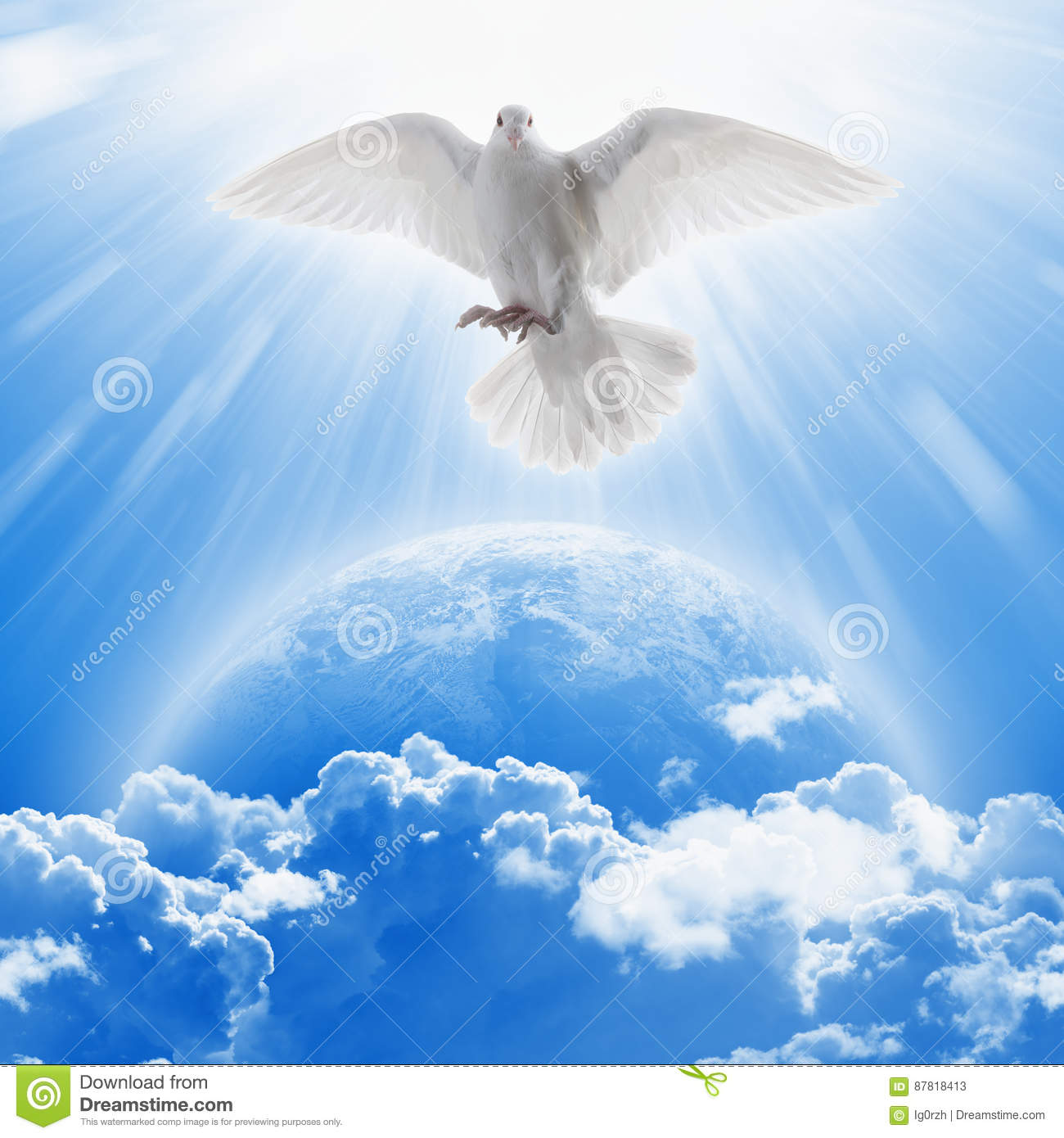 White Dove Symbol Of Love And Peace Flies Above Planet Earth Stock