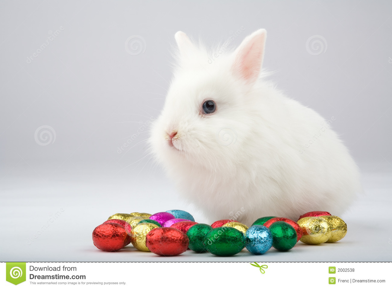 White easter bunny with chocolate eggs