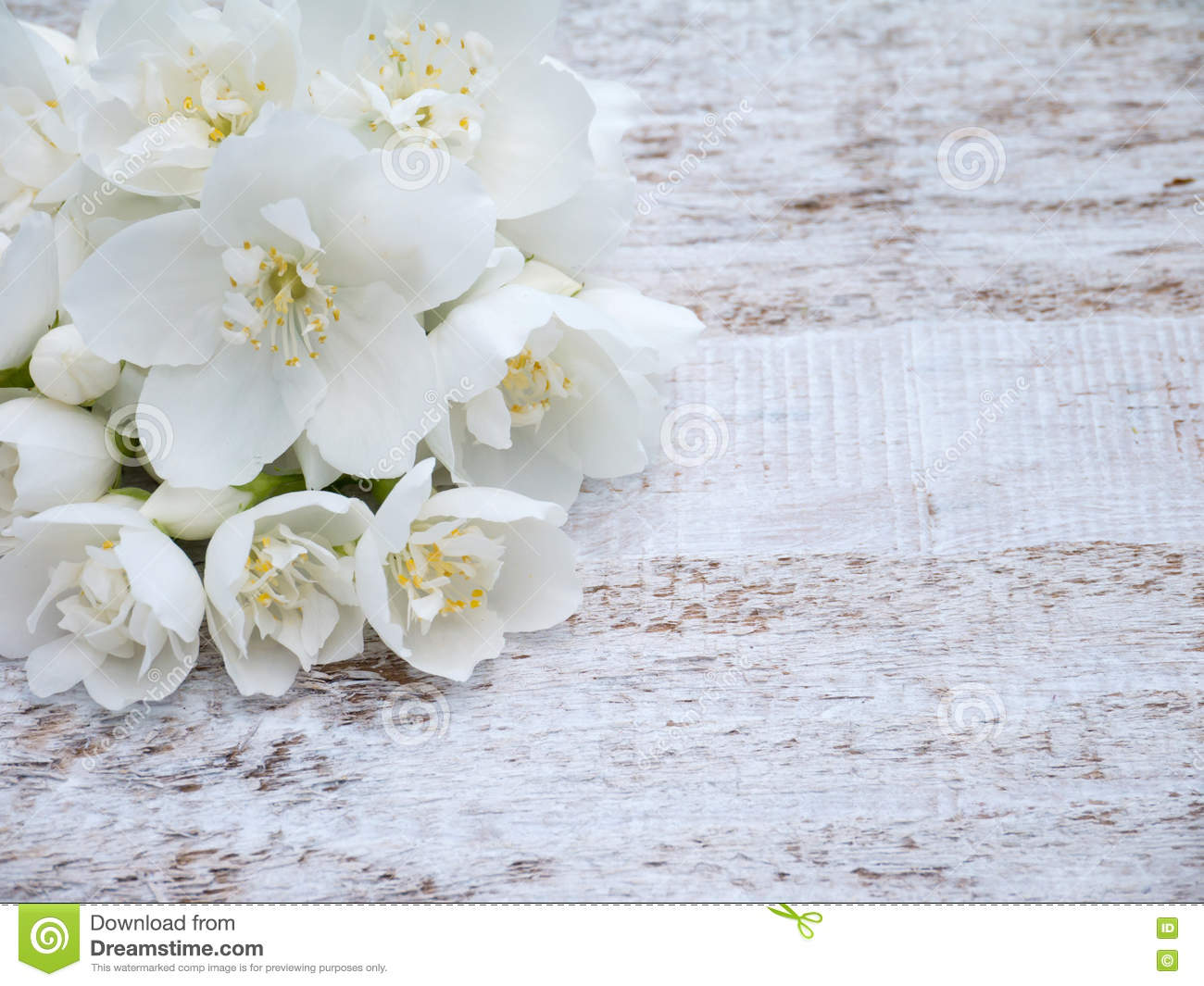 White English Dogwood Flowers Bouquet Stock Image Image Of Nature