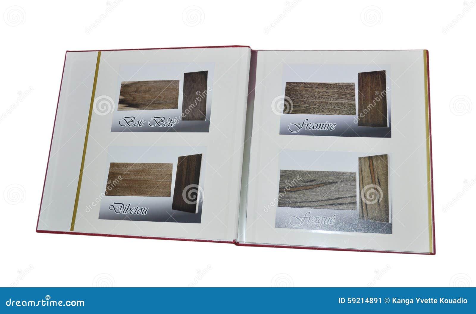 White för foto för illustration för albumbakgrundsdesign